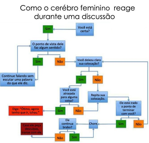 http://orbt.files.wordpress.com/2009/10/cerebrofeminino.jpg