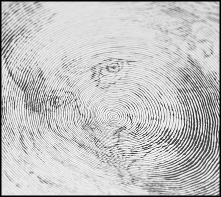 spiraldrawing06